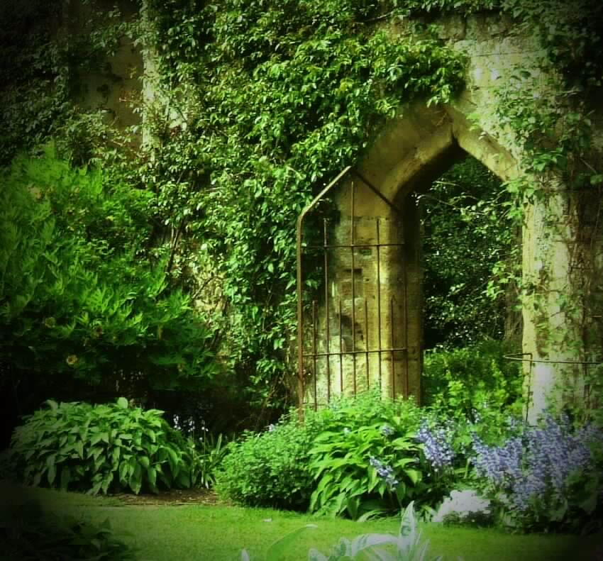 Secret_Garden_by_Smushfaace