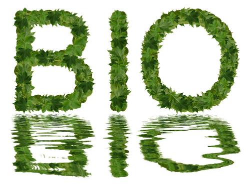 biologisch2